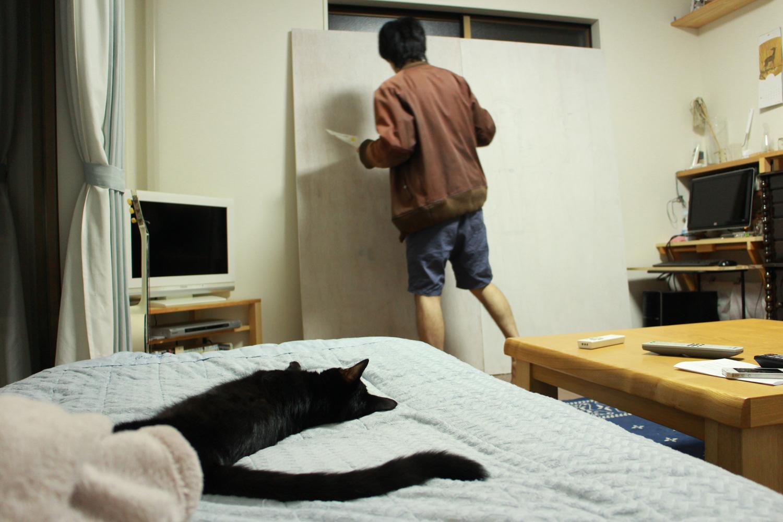 猫が見守る…